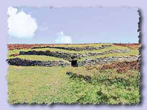 wideford hill chambered cairn s